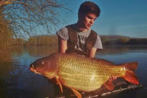 Big carp 2